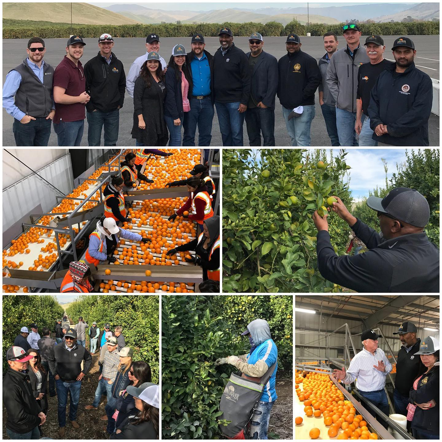 Our group also visited Kings River Packing in Sanger. The Hazelton family started growing oranges in 1857.  Now they farm over 3,000 acres, and pack over 8,000 acres for farmers in the Fresno region.  It's farms like this that help feed the world!